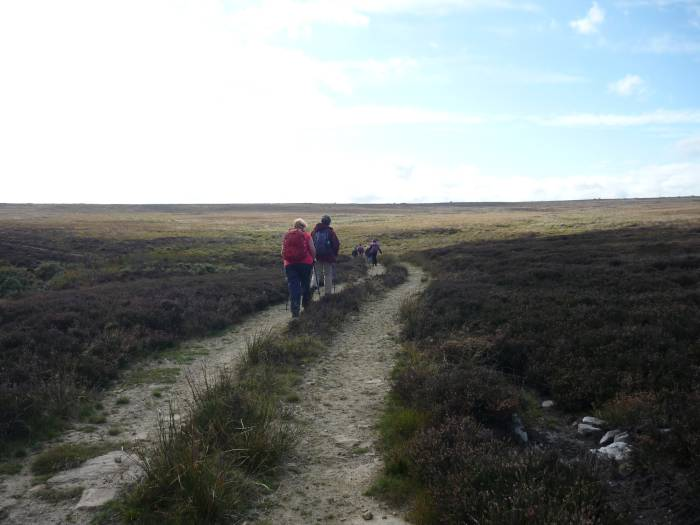 Back across the tracks of the moor