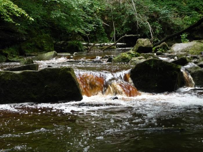 We head along the stream