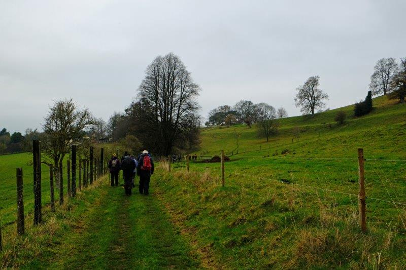 On a wide track - the Cotswold Way