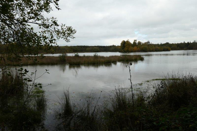 Eventually reaching Woorgreens Lake