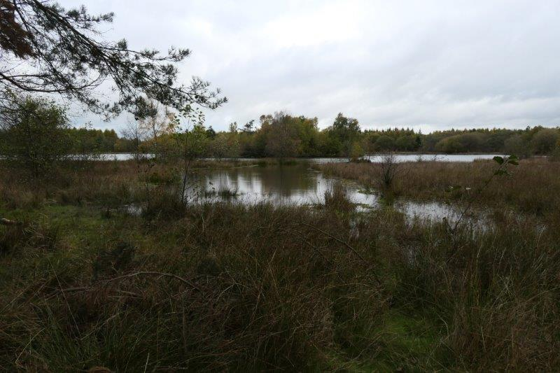 And Nature Reserve
