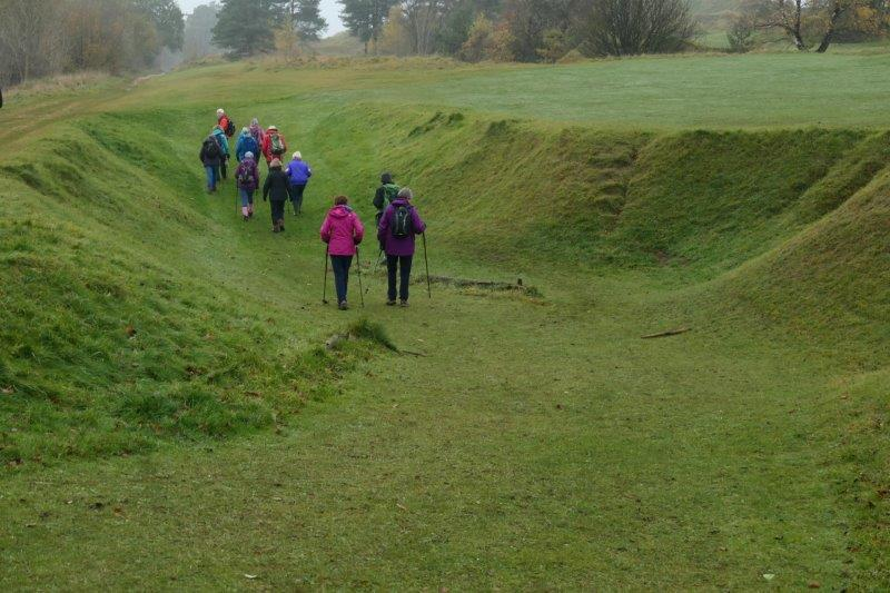 Along the lower slopes of the Beacon