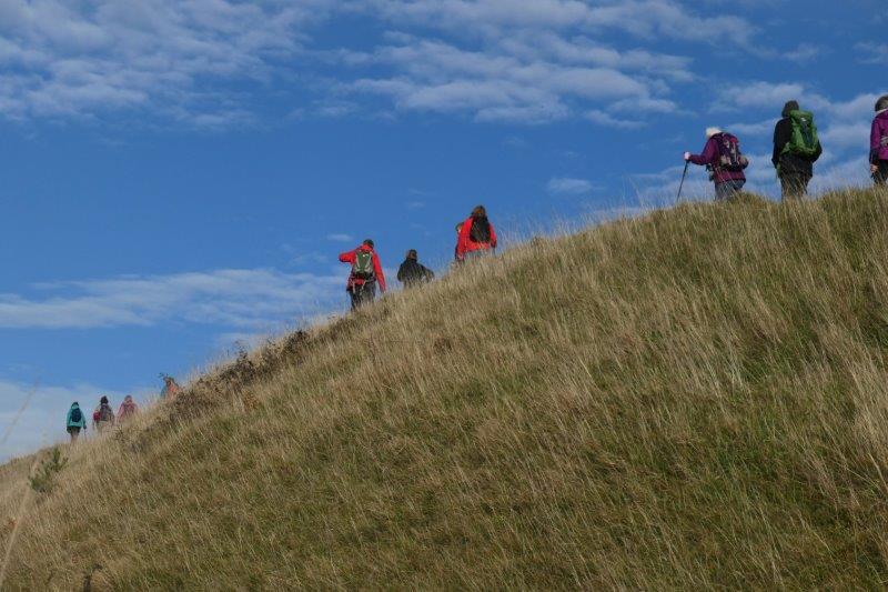 Then climbing up the Beacon