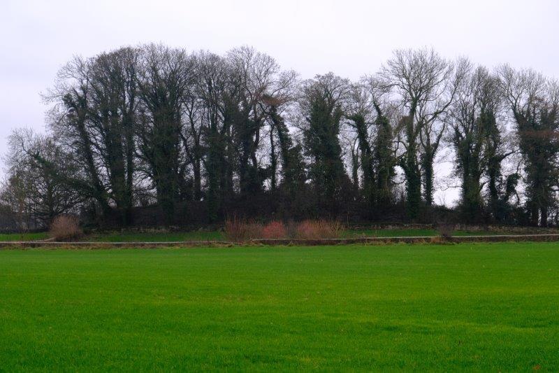A long barrow across the field