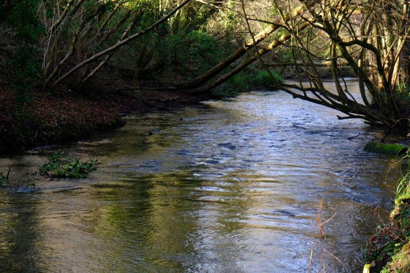 Fast flowing river