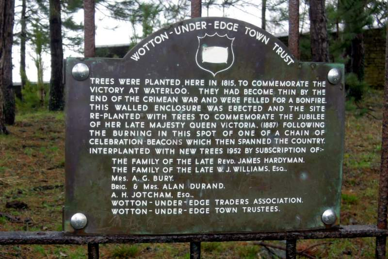 And read why the trees were planted
