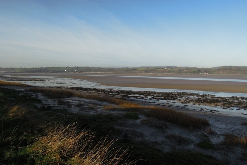 Over the mud flats