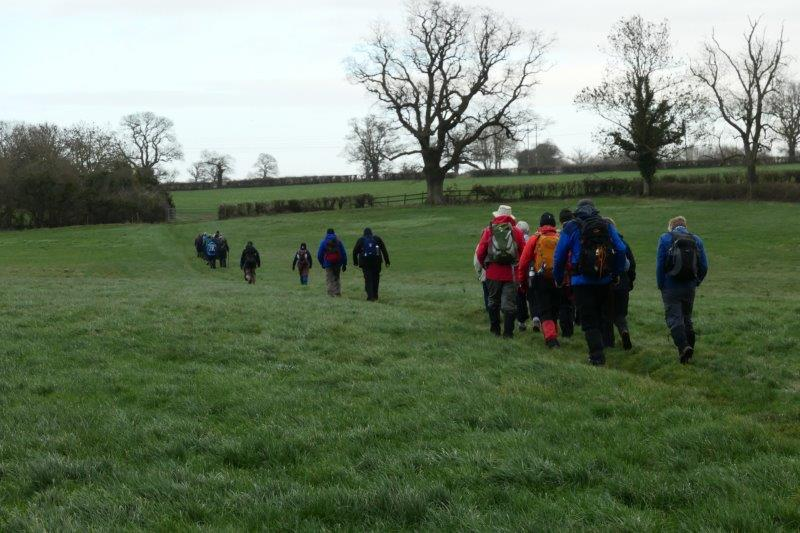 Then taking to the fields