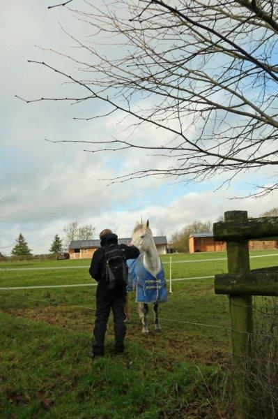 Our own horse whisperer gets to work