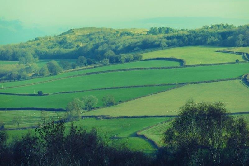 And Painswick Beacon across the fields
