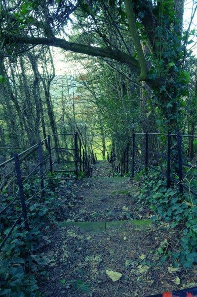 Some steep steps