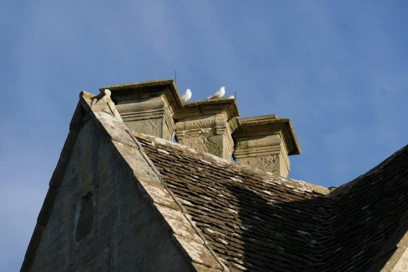 Interesting roof architecture