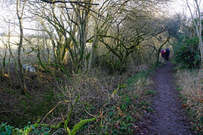 As we continue along the towpath