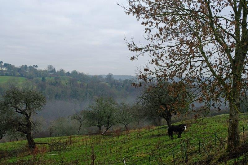 Still a bit of mist in the valley