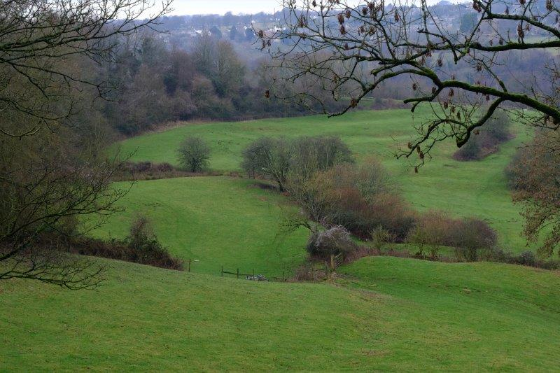 Looking down the Chalford Valley