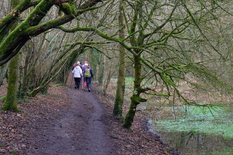 On the old towpath