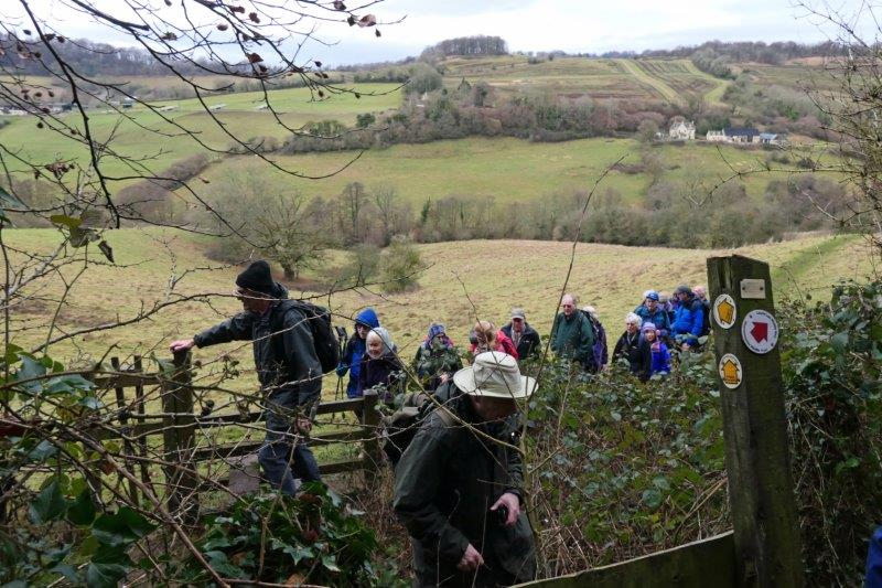 Over a stile into the woods