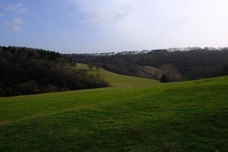 Looking down the valley