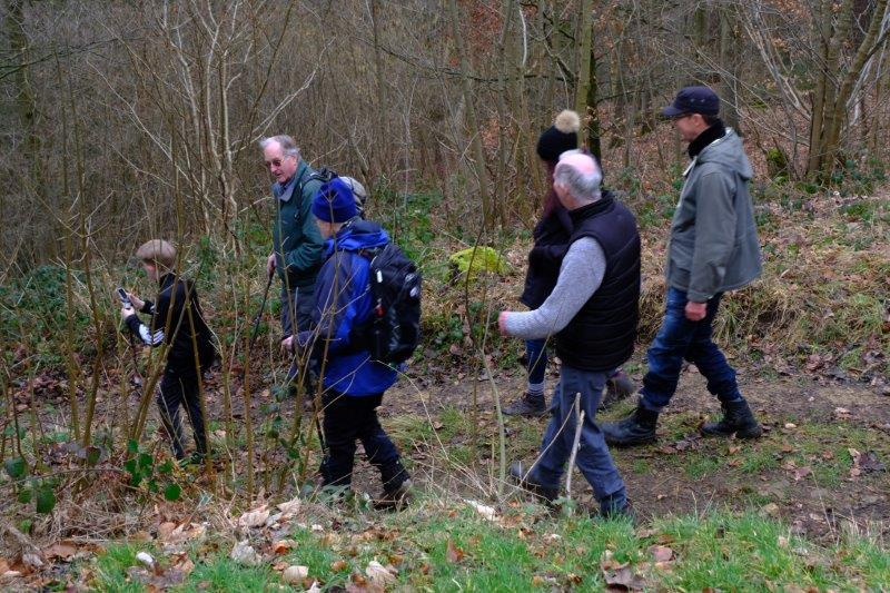 Before we continue on our way through Workmans Wood