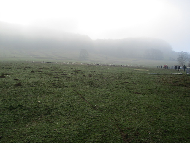 Even more misty on the hills