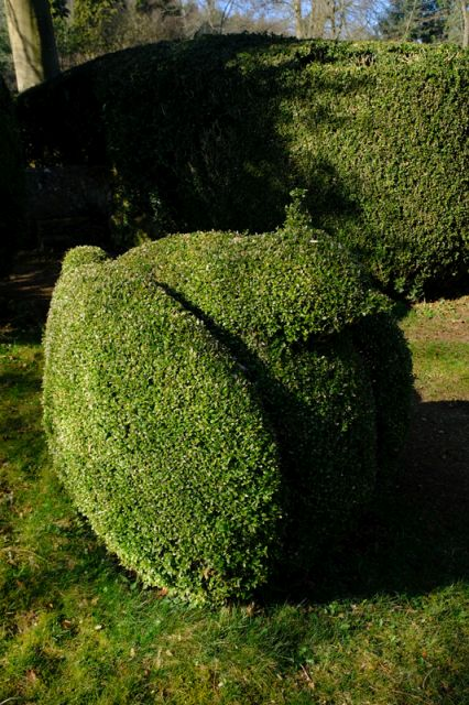 Outside new topiary is taking shape