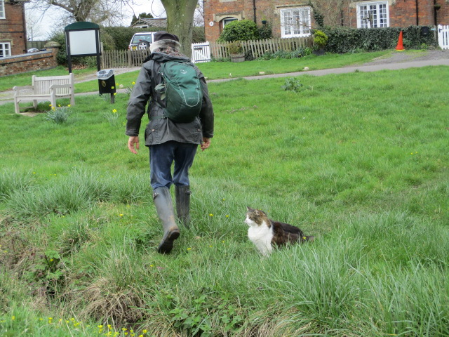 Back at the Green, Franceska befriends the village cat