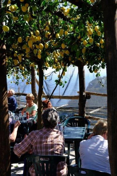 Pausing for refreshment in a wayside cafe under lemon trees