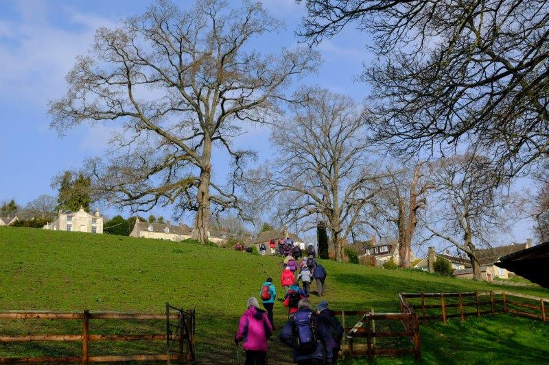 Then uphill into Woodchester