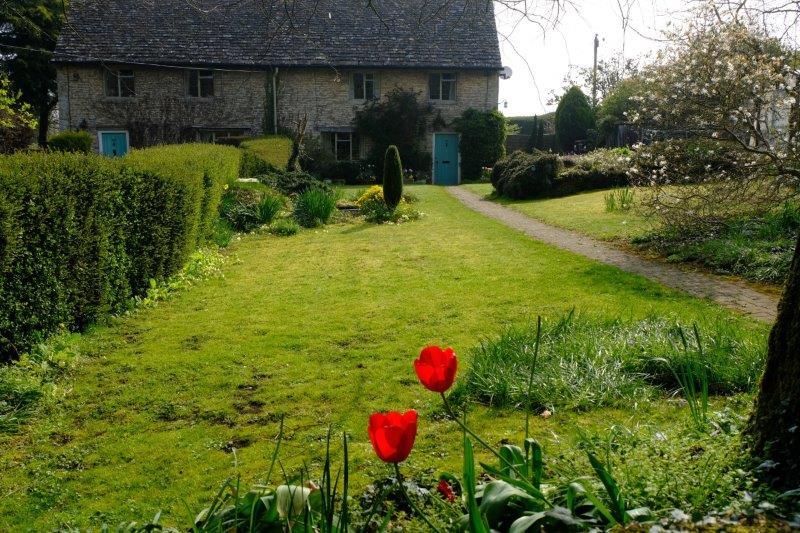 In cottage gardens