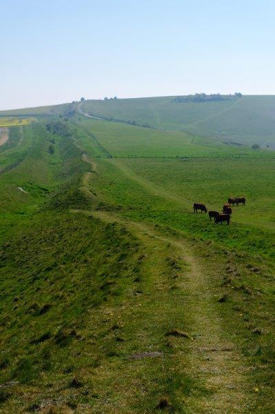 Our route takes us along a narow ridge