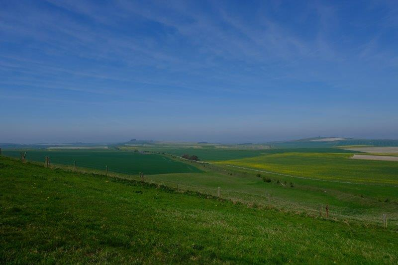 Looking across to the Marlborough Downs