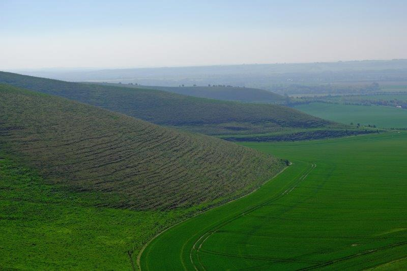 And down the ridge to Salisbury Plain
