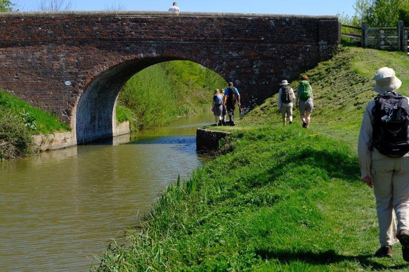 Including bridges to walk under