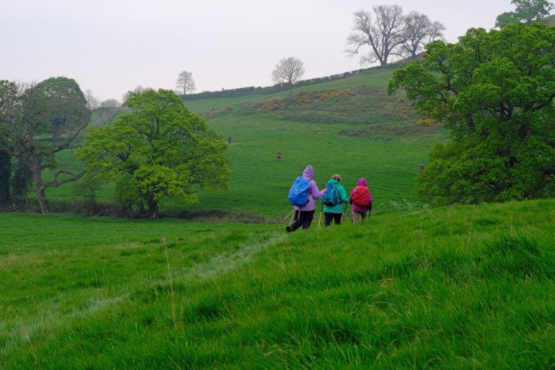 Rain starting to fall as we head off across fields