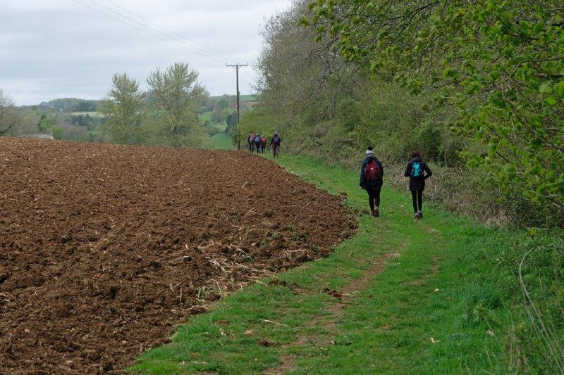 Making our way round a field
