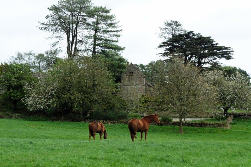 The old Saxon Church across the field