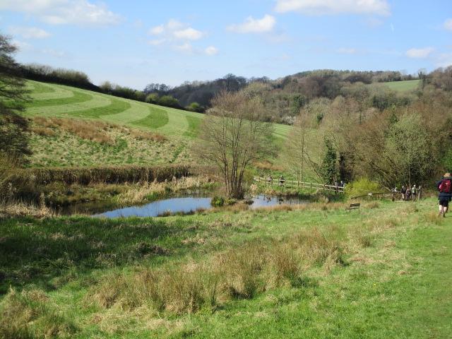 Past the pond