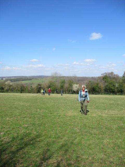 Across fields in the sunshine