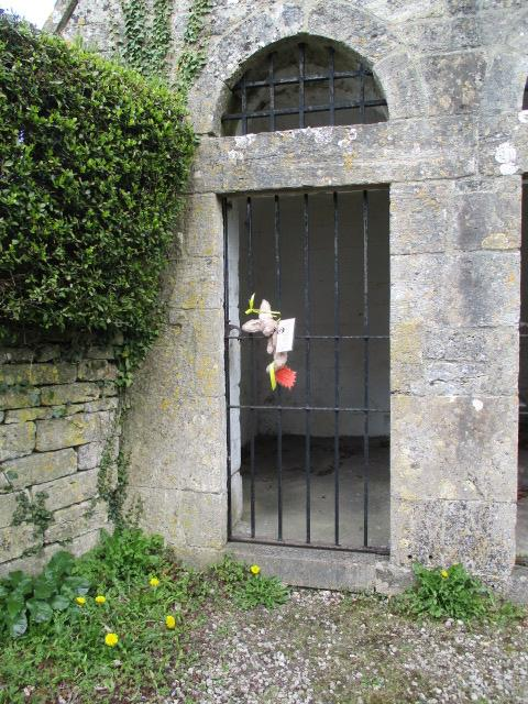 Another bunny on the lock-up