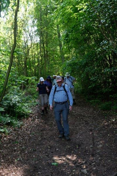 As we make our way down to the Cotswold Way