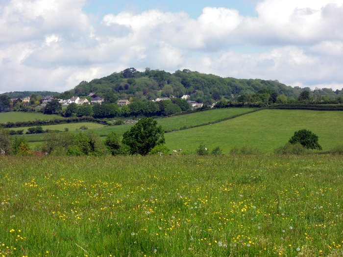 We have come from Wotton