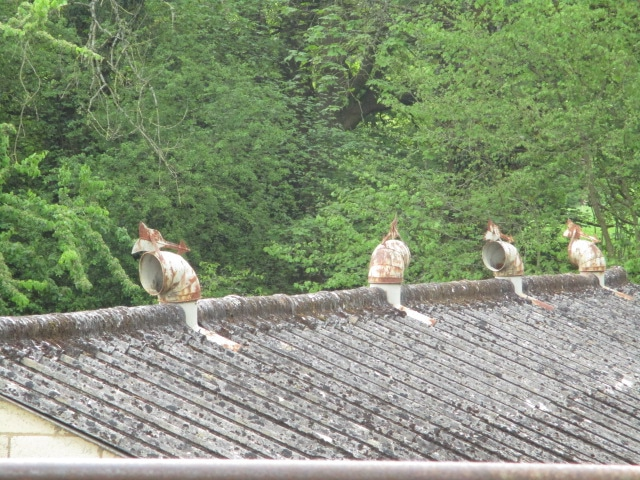 These cowls on the roof look like artistic birds