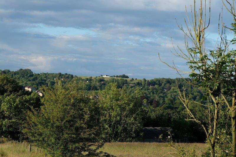 Looking across to Minchinhampton Common