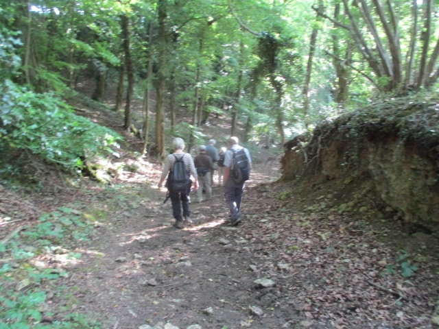 And head down through Cowcombe woods