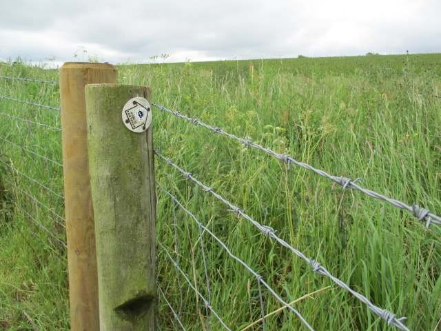 The farmer has put up a new barbed wire fence. Not sure how we are supposed to follow this sign