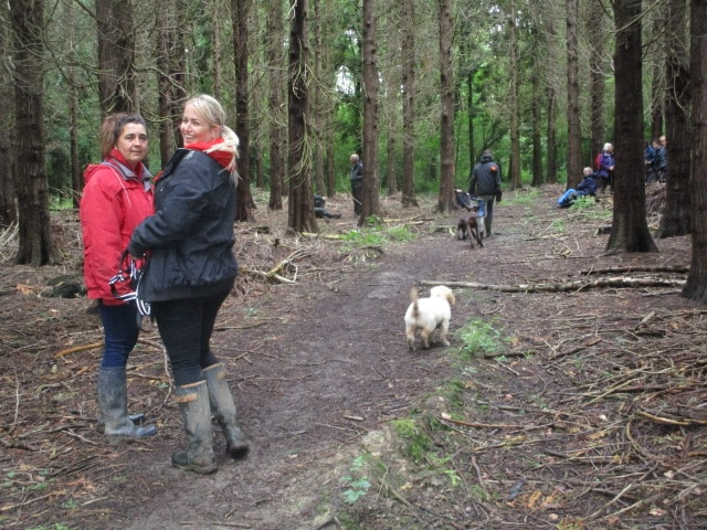 We stop for coffee with some shelter and are joined by dogs and dog-walkers
