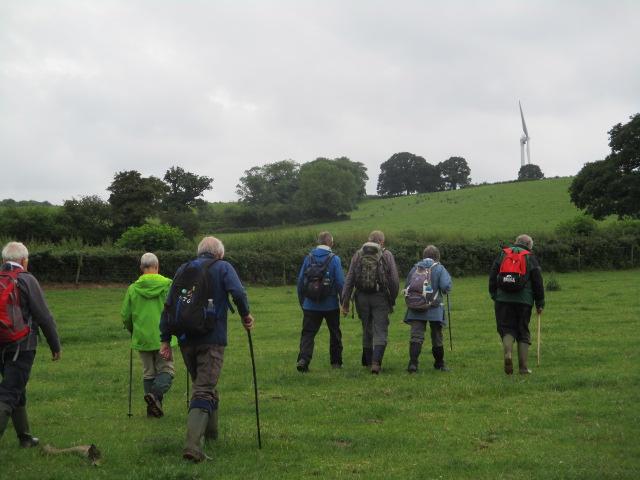Then across fields