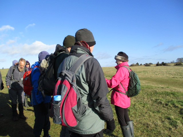 A brief stop to talk about pillow mounds and rabbits
