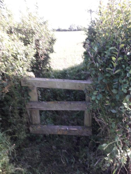 The cleared stile from both sides. 4 weeks ago this was almost covered.