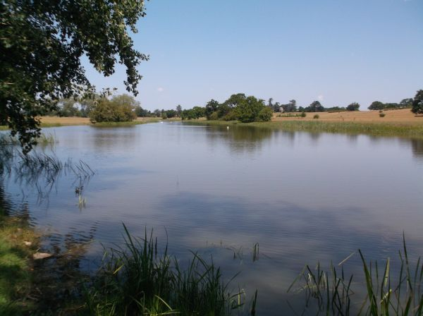 A view of Croome River (actually a serpentine lake)